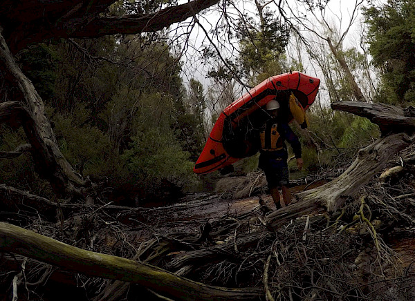 Carrying a packraft through a log-jammed river