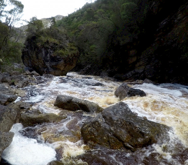 River with whitewater and rocks