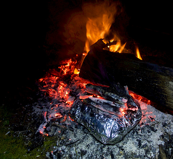 Campfire cooking in foil packet
